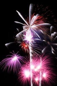 cdcguard_06_Firework_065